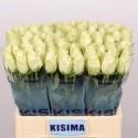 R GR ATHENA - Kisima / Fresco