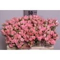 R branchue Odilia rose - Blen Flowers