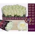 R Gr Avalanche - Meijer Roses