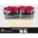 R Gr Tacazzi - Flora Ola Ltd.
